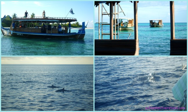 Malediven6