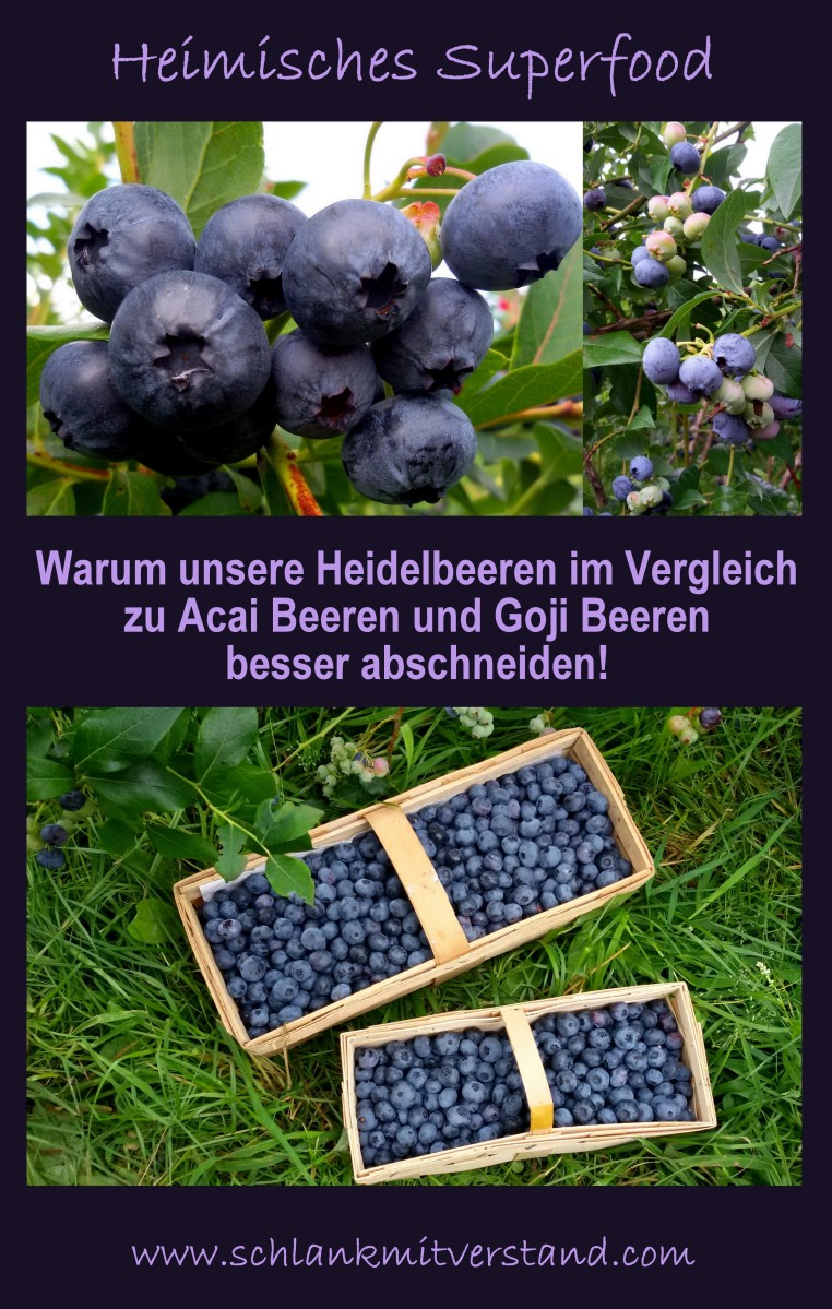heimisches superfood warum unsere heidelbeeren im vergleich zu den superbeeren acai und goji. Black Bedroom Furniture Sets. Home Design Ideas